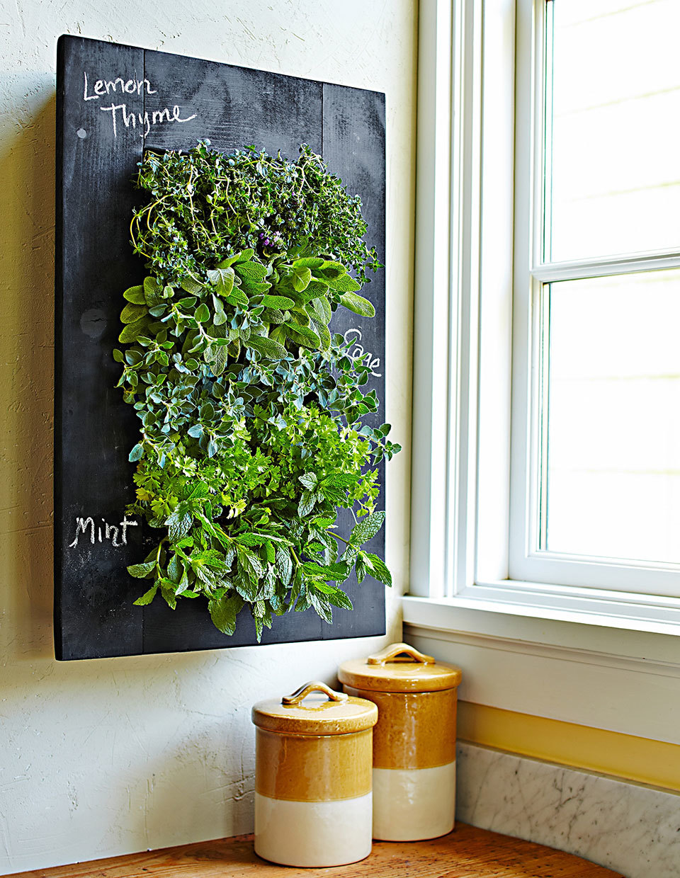 Wall Planter (Williams Sonoma)